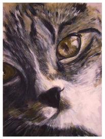 Augen, Acrylmalerei, Katze, Malerei