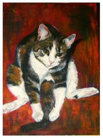Verspielen, Rot, Katze, Malerei