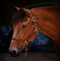 Gemälde, Pferde, Traum, Augen