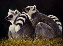 Tierwelt, Augen, Realismus, Tiere