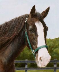 Realismus, Tiere, Hübsche, Klassisch