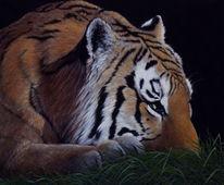 Realismus, Tiger, Augen, Gemälde
