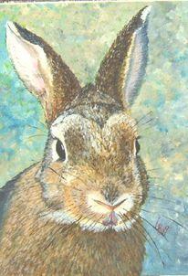 Acrylmalerei, Hase, Tiere, Malerei