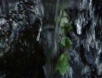 Wasserfall, Zufall, Fotografie