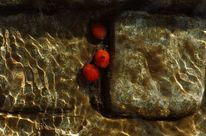 Rot, Spiegelung, Unterwasser, Fotografie