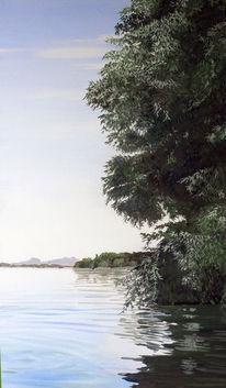 Grün, Bodensee, Sommer, Wasser