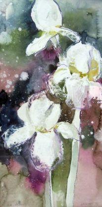 Pflanzen, Schicht, Aquarellmalerei, Aquarell