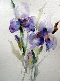 Blumen, Nass, Schicht, Aquarell