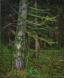 Ölmalerei, Feld, Natur, Wald