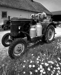Traktor, Vergangenheit, Oldtimer, Vertikalpanorama