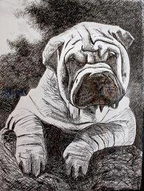 Kugelschreiber, Portrait, Shar, Zeichnungen