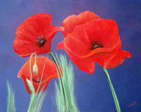 Wiese, Leben, Rot, Blumen