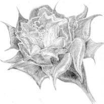 Blumen, Grafik, Kopfschmerz, Tag