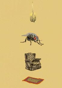 Insekten, Nonsens, Stube, Fliege