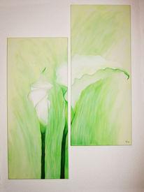 Calla, Grün, Weiß, Malerei