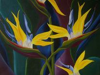 Blumen, Bunt, Strelitzia, Malerei