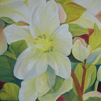 Christrose, Ölmalerei, Blumen, Blüte