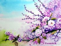 Blumen, Baumblüte, Frühling, Aquarell
