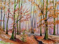 Buchenwald, Herbst, Aquarell,
