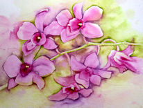 Orchidee, Blumen, Aquarell