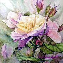 Blüte, Blumen, Aquarellmalerei, Aquarell