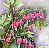 Aquarellmalerei, Tränendesherz, Blumen, Aquarell