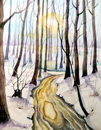Wald, Winter, Auwald, Aue