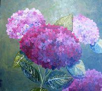 Blumen, Sonne, Flora, Blüte