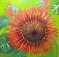 Pflanzen, Erntezeit, Sonne, Blumen