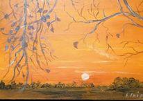 Sonne, Feld, Dezember, Baum