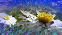 Energie, Blumen, Frühling, Abstrakt