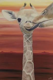 Giraffe, Baby, Orange, Afrika