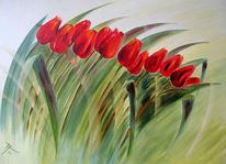 Grün, Rot, Frühling, Tulpen