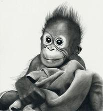 Baby, Orang utan, Affe, Zeichnungen