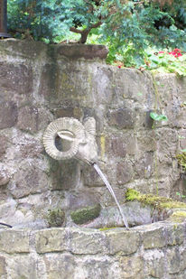 Fotografie, Muschelkalk, Widderkopf, Brunnen