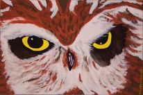 Acrylmalerei, Eule, Malerei, Tiere