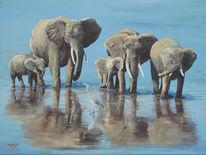 Tiere, Afrika, Landschaft, Baby elefant