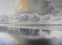 Nordsee, Möwe, Welle, Sonnenlicht