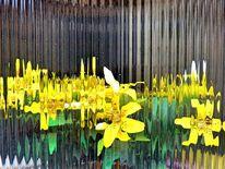 Abstrakt, Blumen, Orchidee, Glas