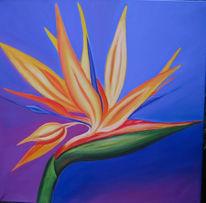 Blumen, Estrelizia, Malerei, Stillleben