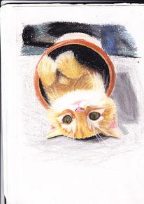 Kreide, Katze, Bunt, Malerei