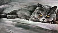 Augen, Katze, Tiere, Tierzeichnung