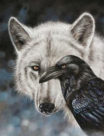 Weiß, Vogel, Wolf, Rabe