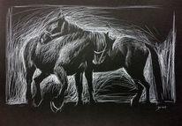 Pferde, Pferdezeichnung, Kreide, Zeichnungen