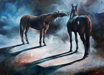 Pony, Tiere, Pferde, Licht