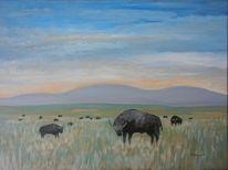 Landschaft, Acrylmalerei, Usa, Büffel