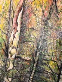 Natur, Herbst, Zerfall, Birkenwald