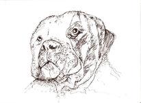 Zeichnungen, Portrait, Blick