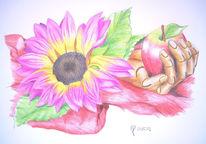 Blüte, Holzhand, Tuch, Zeichnungen