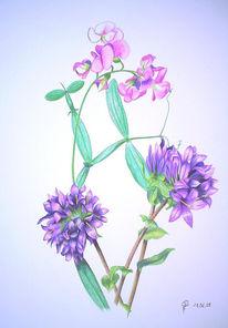 Buntstiftzeichnung, Blumen, Zeichnungen, Stillleben